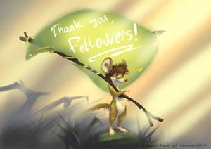 Thanks, followers!