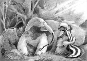 The anteater