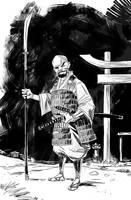 Samurai 05 by IttoOgamy