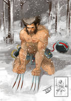 Wolverine...Weapon X by IttoOgamy