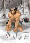 Wolverine...Weapon X
