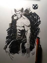 Wolverine by IttoOgamy