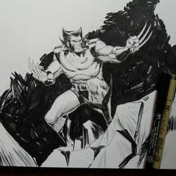 Wolverine... by IttoOgamy