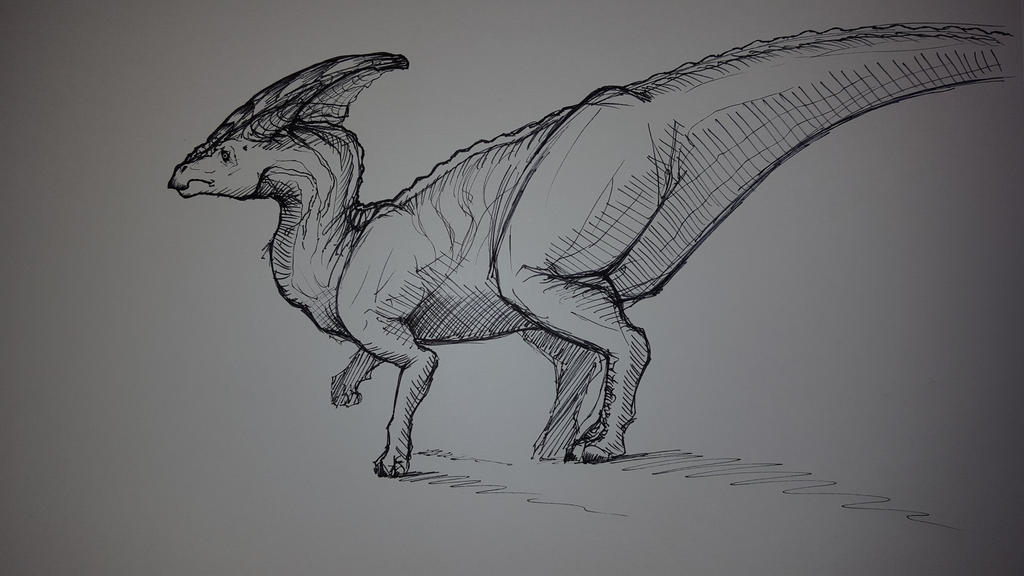 Parasaurolophus I. by Knullwes