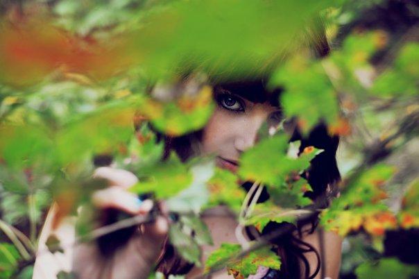 Leaves by SusanCoffey