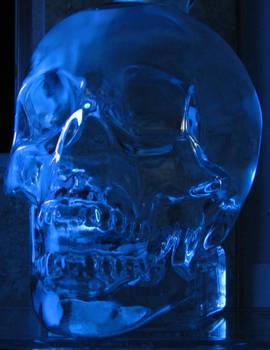 Alcohol inspired Blue Skull