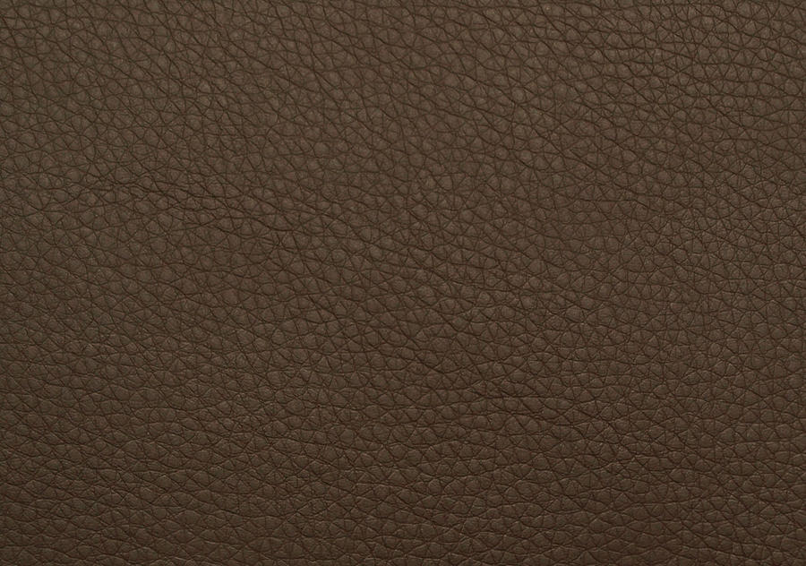 Brown Leather by piximi