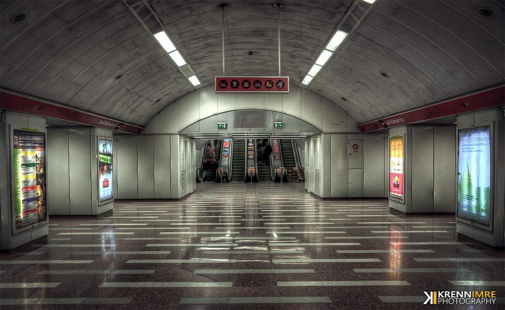Underground Life by piximi