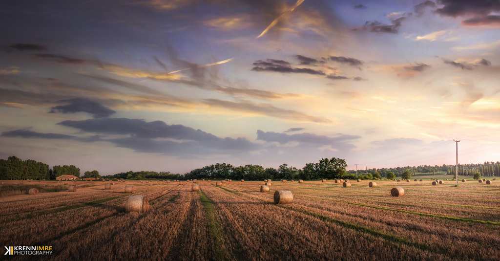 Hay bales in the sunset by piximi