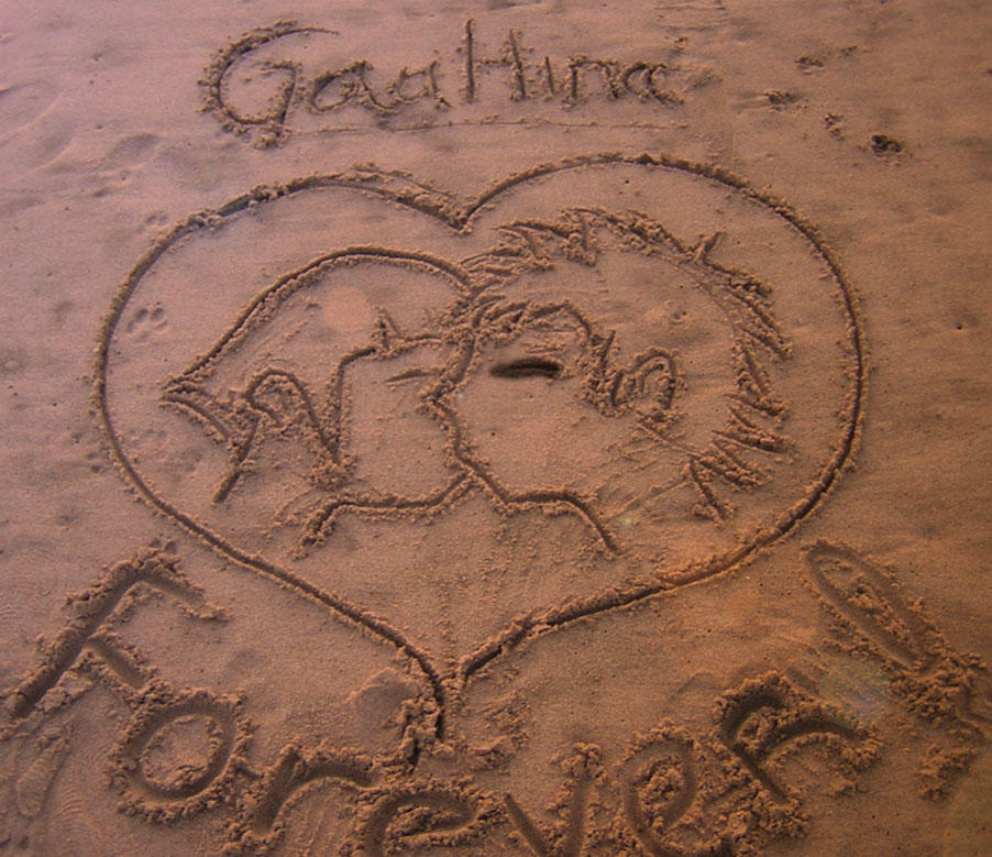 GaaHina in the sand by GaaHinaClub