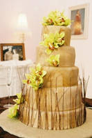 My sister's wedding cake by ncspurlin