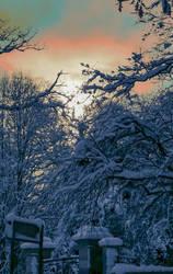Sunset and snow by Alexandra Cook aka Linandara