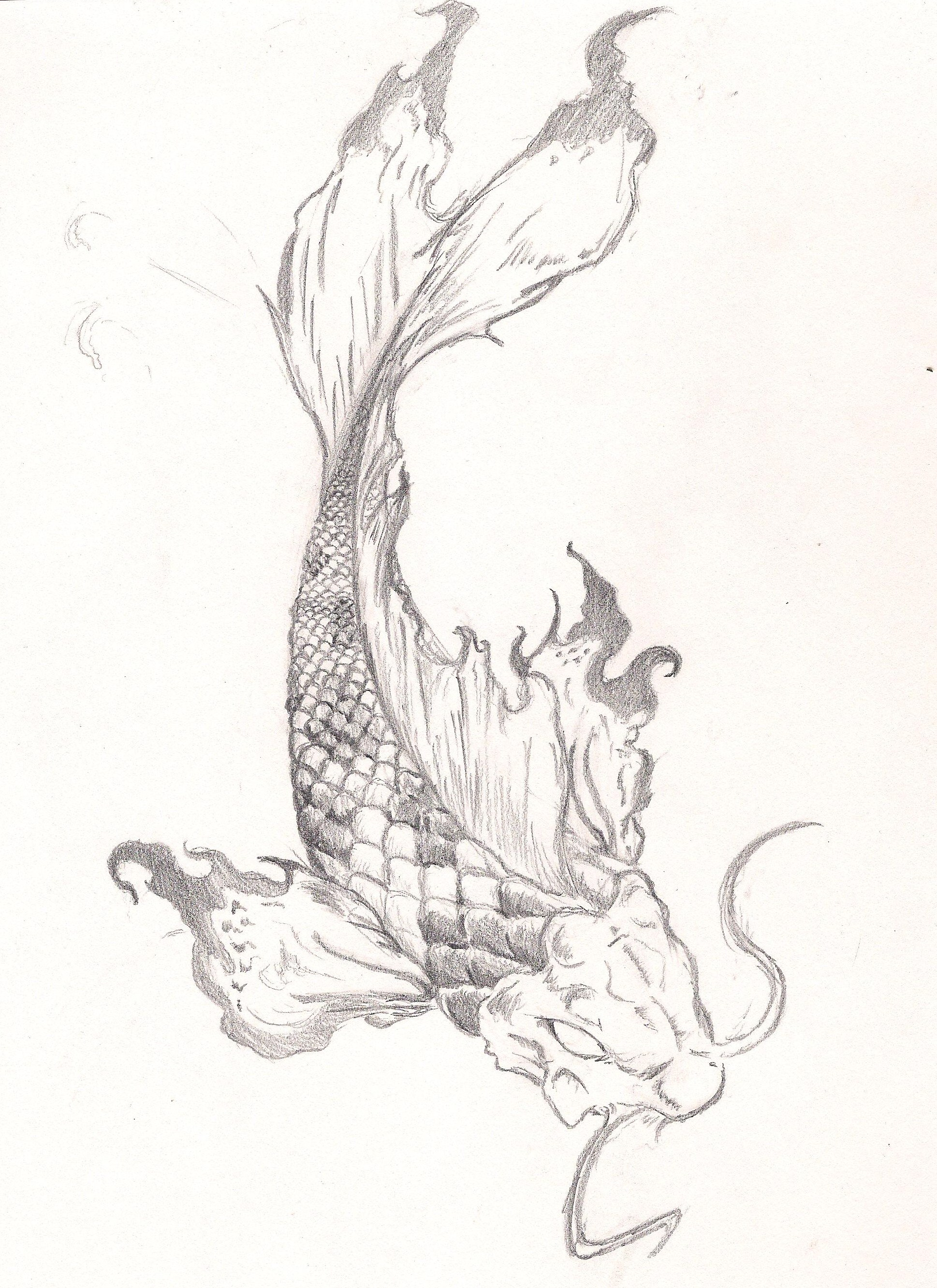 Koi fish tattoo by roninsamurai87 on deviantart for Koi fish sketch