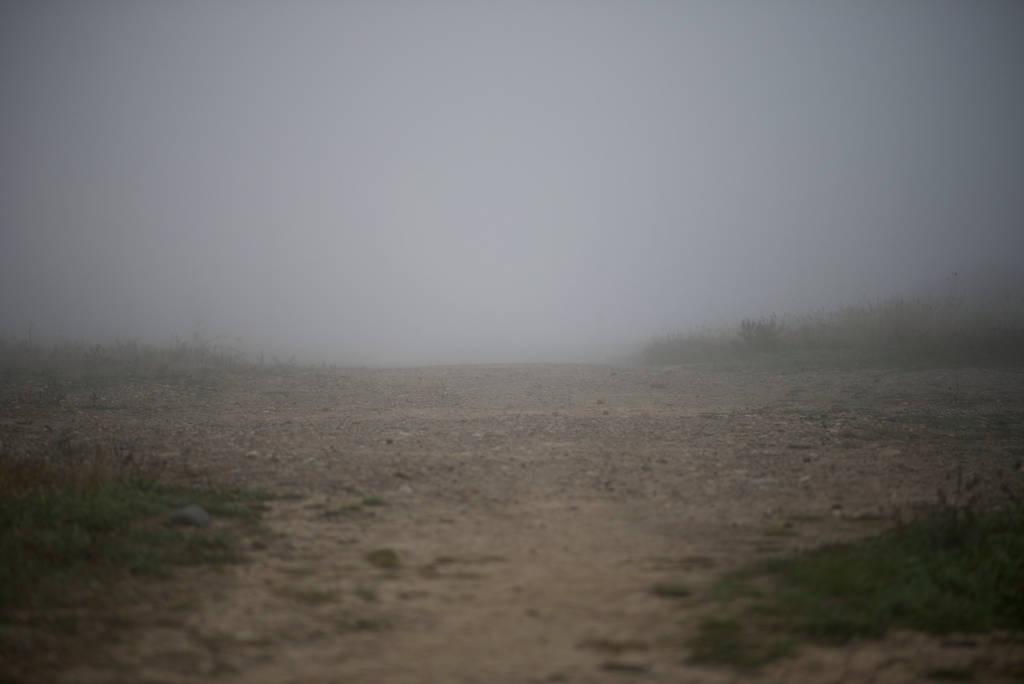 Foggy Stock Background by Snowenne