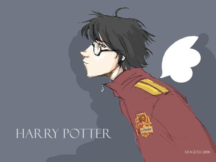 Harry Potter by usagistu