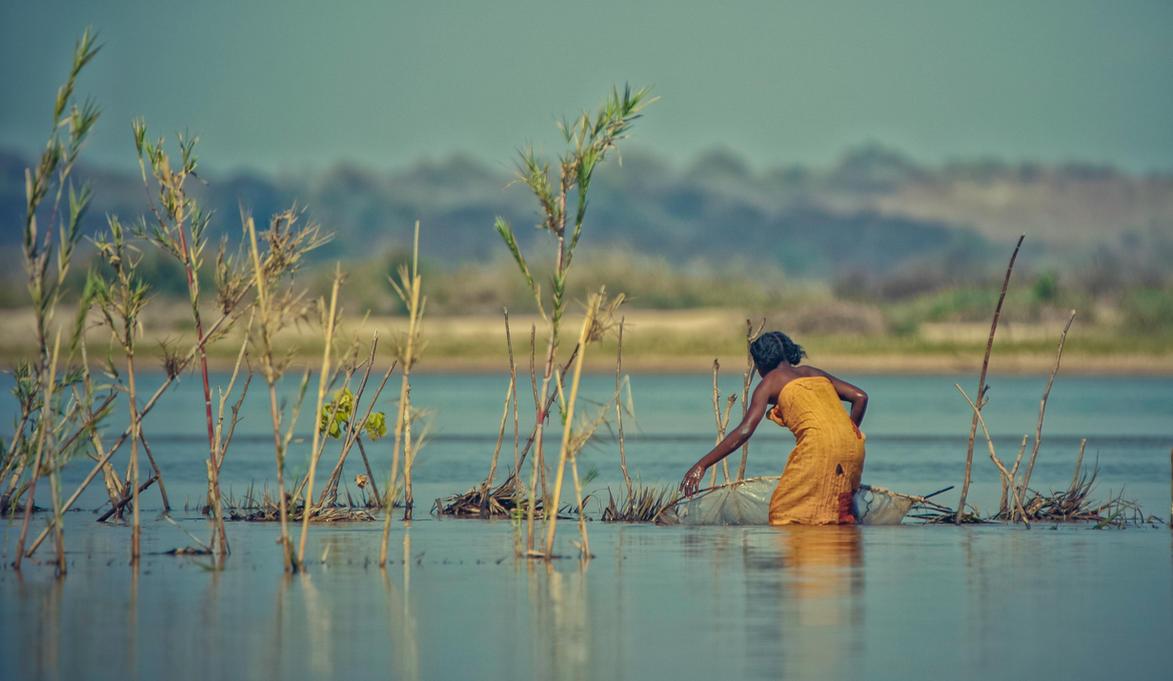 Fishing by Darth-Marlan