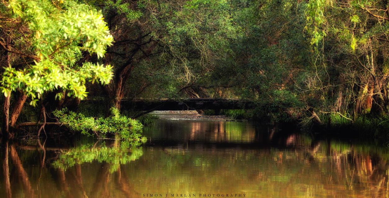Bridged by Darth-Marlan