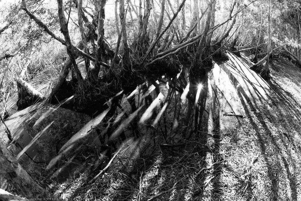 Light streaks by Darth-Marlan