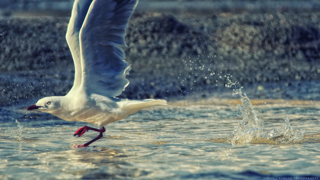 Take off by Darth-Marlan
