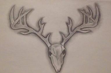 deer skull by samanthalm