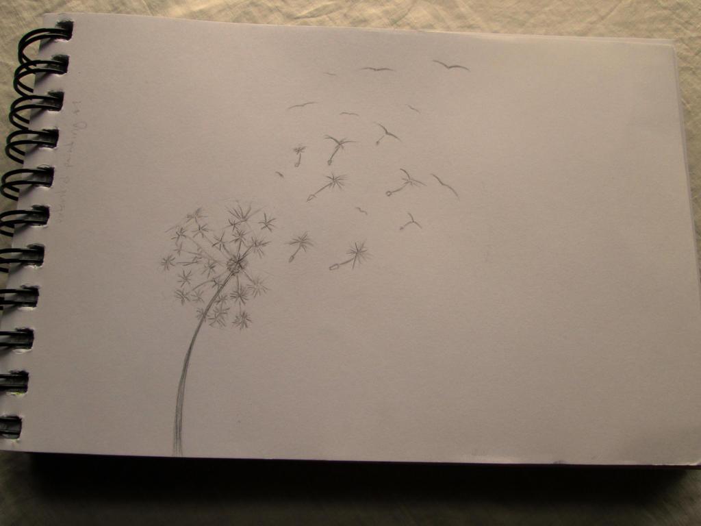 Wish Flower Sketch by Ebonyrosewood on DeviantArt