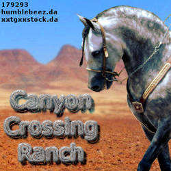 CanyonCrossingAVI by elloisejorritsma