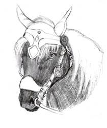 German Draft Horse