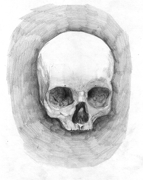 Skull_study_7___child___by_dclaudiob.jpg