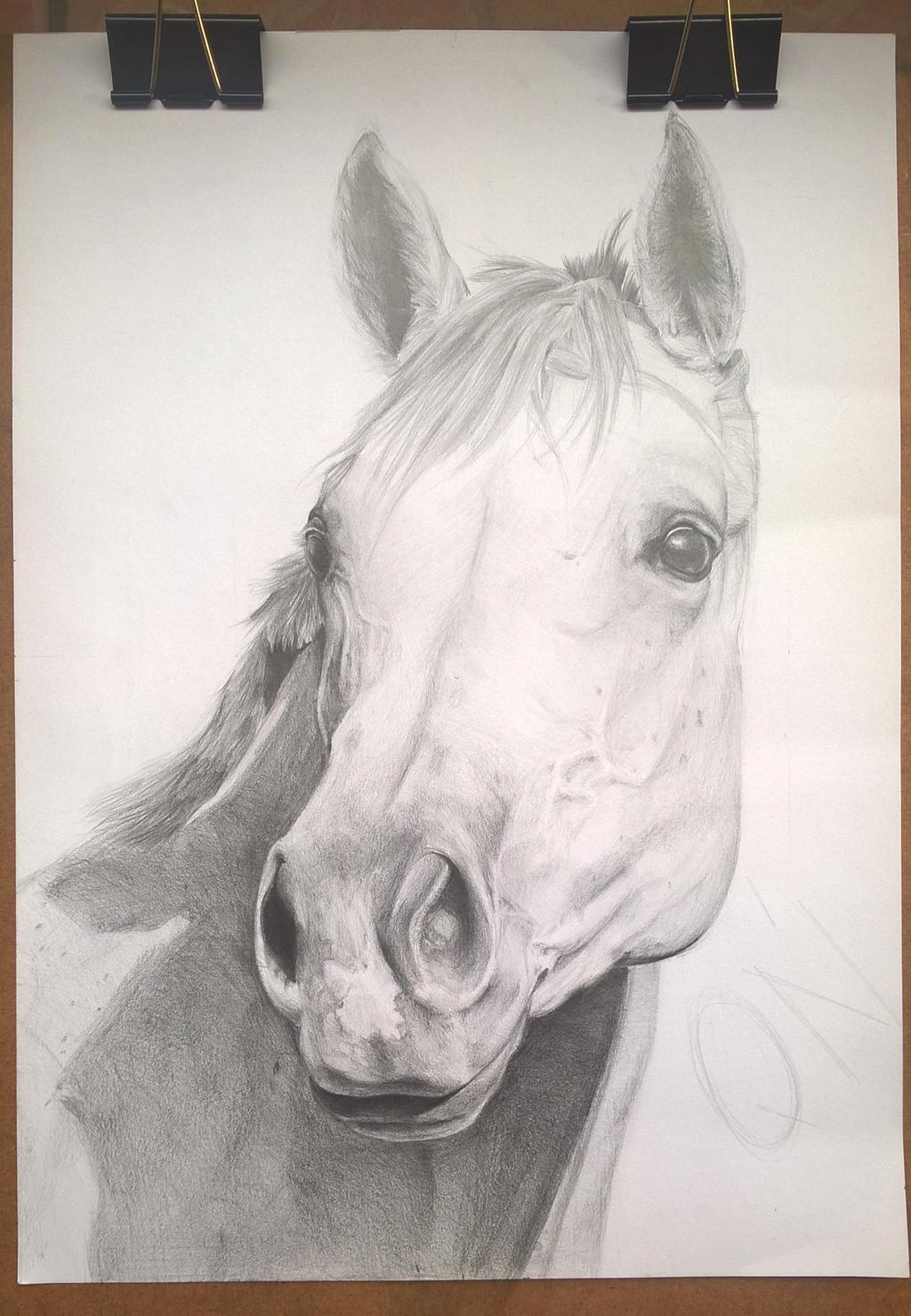 horse wip by Eshaerg