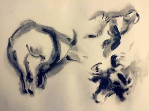 Aesop 9: Bull Calligraphy Studies