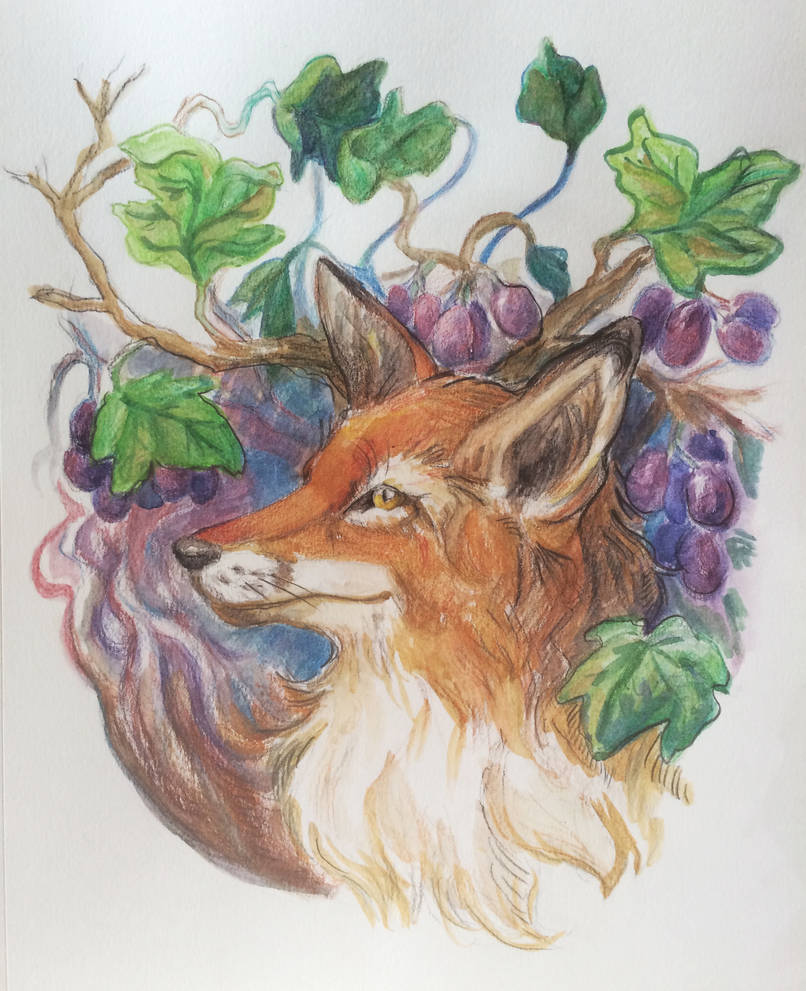 Aesop 10: Fox and Grapes