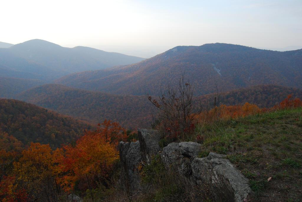Autumn 4 by LadyA-Stock