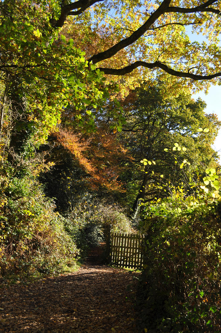 Path to Offa's Dyke by Jakari