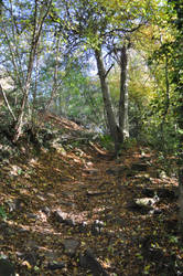 The Path to The Devil's Pulpit