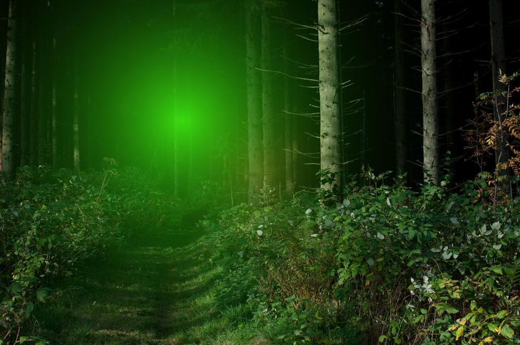 Green Light In The Forest By RavensLane ...