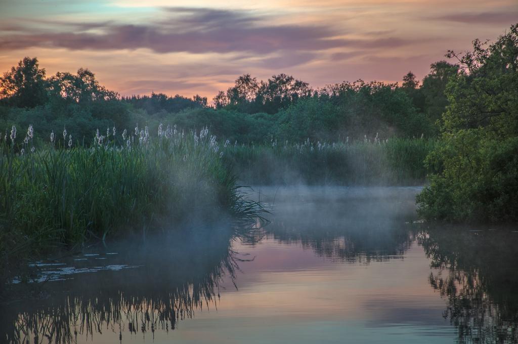 Purple river by RavensLane