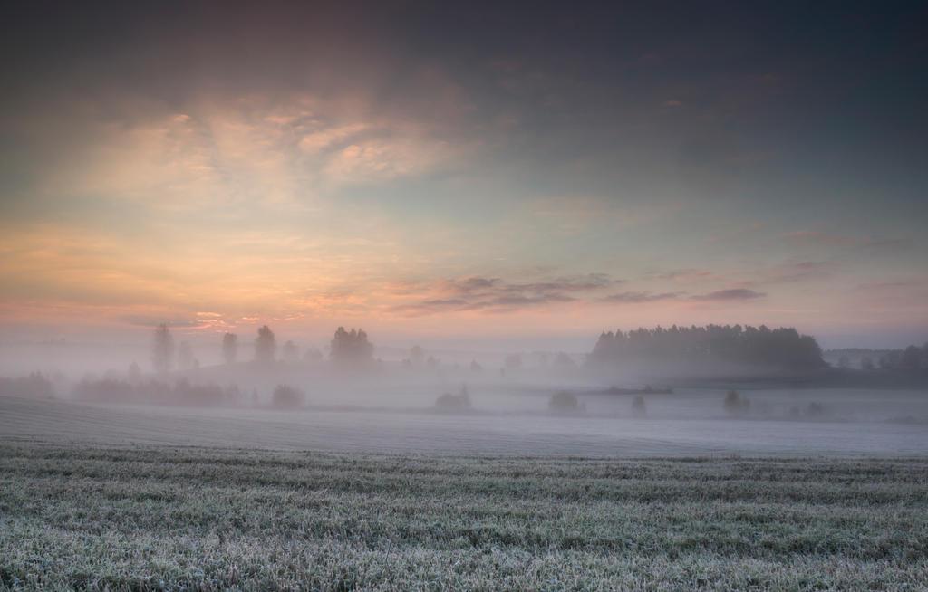 Frosty morning by RavensLane