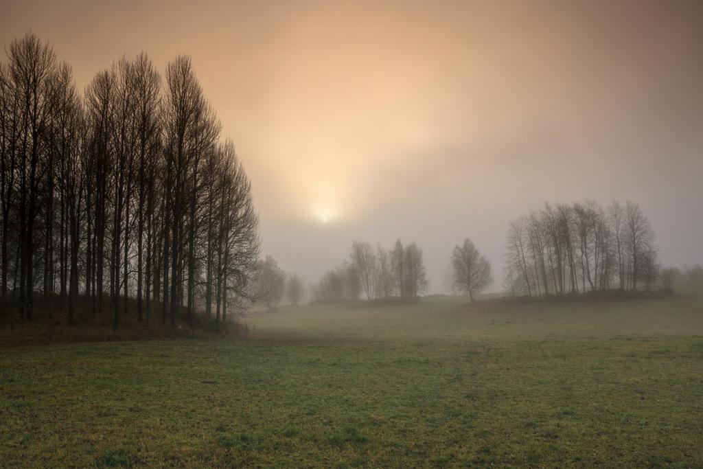 Fog-b151118 by RavensLane