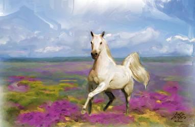 White Horse by LamaBayoun