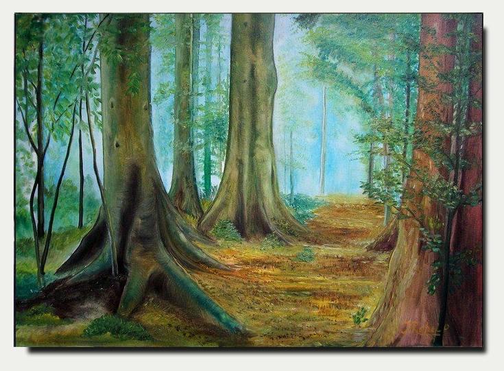 △ La forêt Talaïala △ A__1_ll__by_zoltan50-db2wd2a