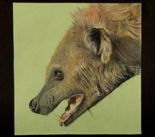 Hyena Render by JusDrewIt