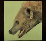 Hyena Render