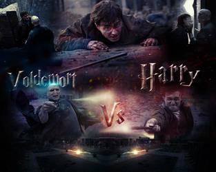 Harry Vs. Voldemort by MohamedGfx