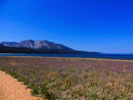 Lake Tahoe2 by Drury-Lane