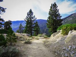 Tahoe HikingTrail by Drury-Lane