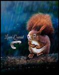 Lover'sQuirrel
