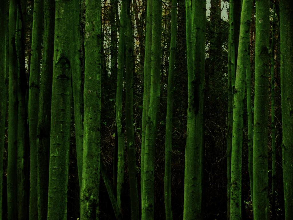 Dark Green World