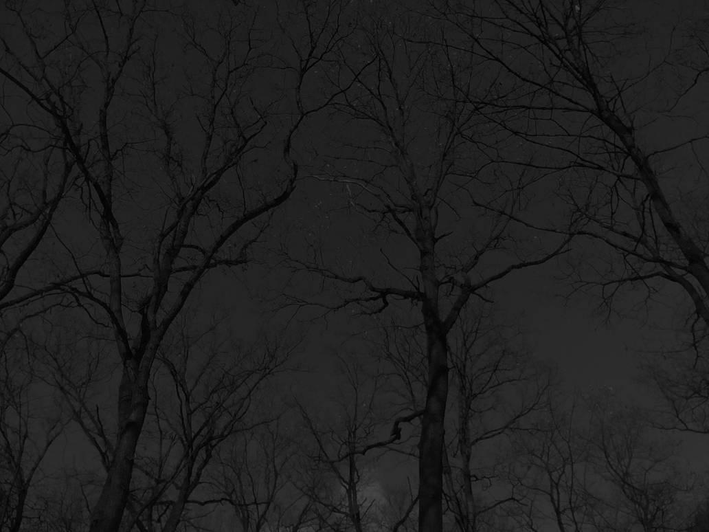 Dark Branches by Ellrohir