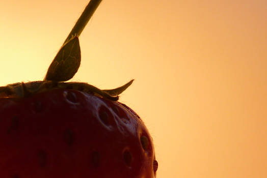 Berrylicious