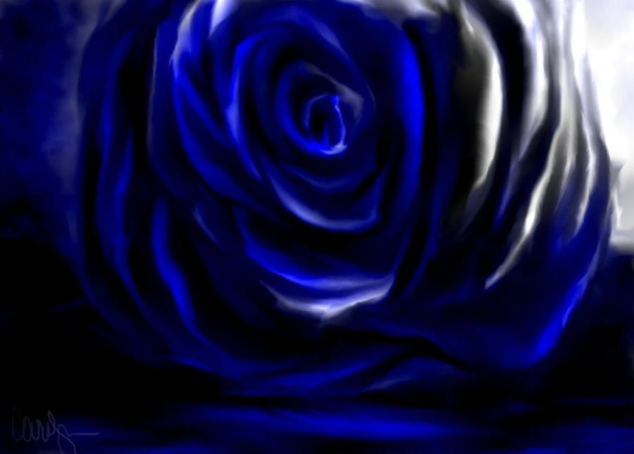 Blue rose by Car2010loc